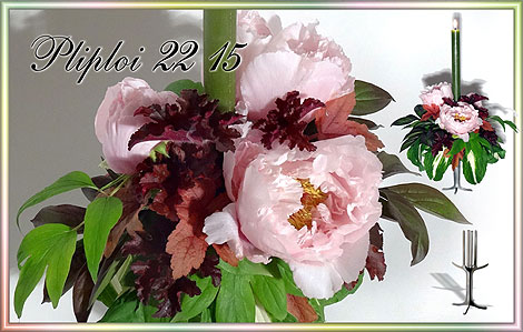 Design Edelstahl: Pliploi 22 15 mit Steckschaumzylinder Ø 8 cm / Blüten: ● Paeonia suffruticosa / Blätter: ● Paeonia ● Heuchera, ● Hosta 'Night before Christmas' / ©seriFleur 2017